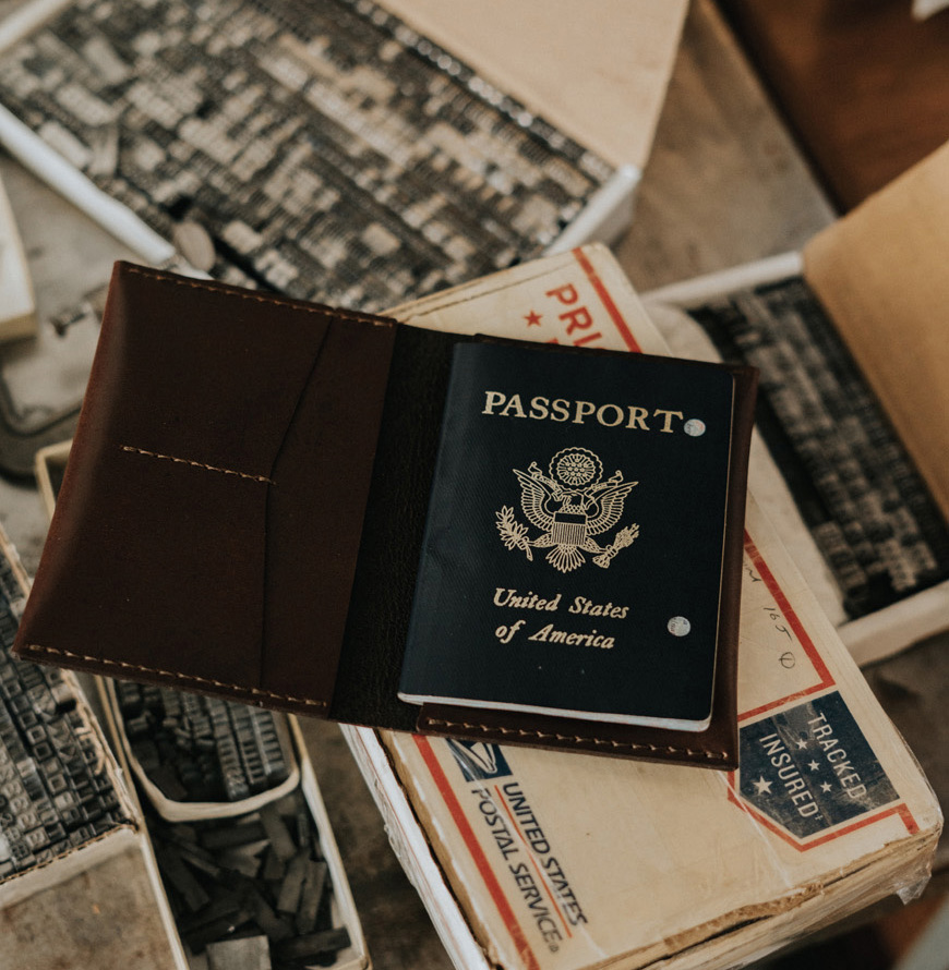 Citizenship by Investment, Numbers and Possibilities