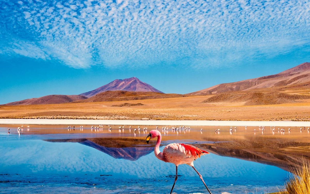 Chile Golden Visa Residency by InvestmentProgram
