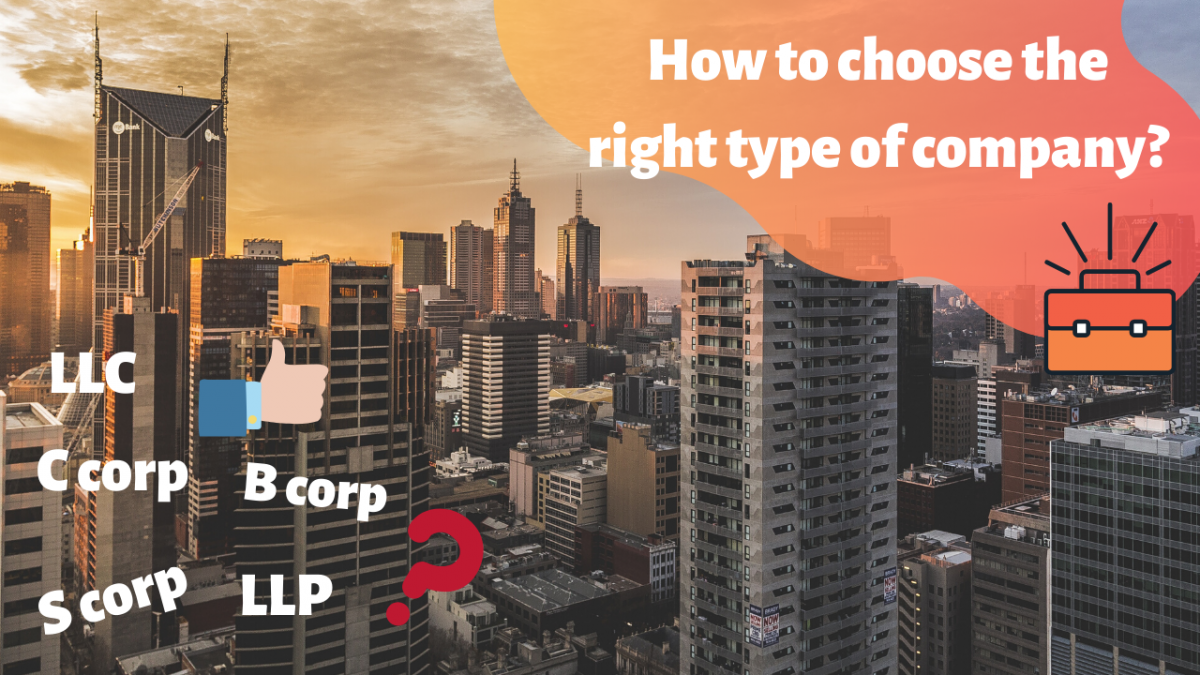 What type of company is right for you and why? (All the different types of companies explained)